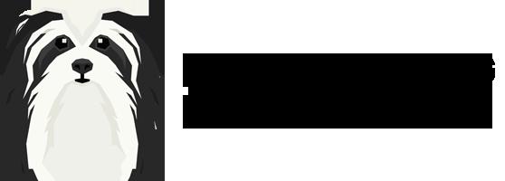 everything havanese network logo